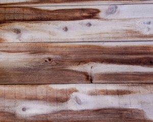 vlhkosť dreva