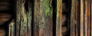 staré drevo